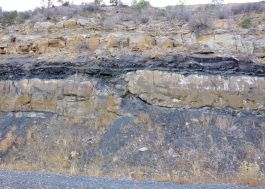 Raton Formation coal intruded by a sill complex.